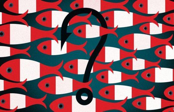 Perú: ¿de quién son los peces?